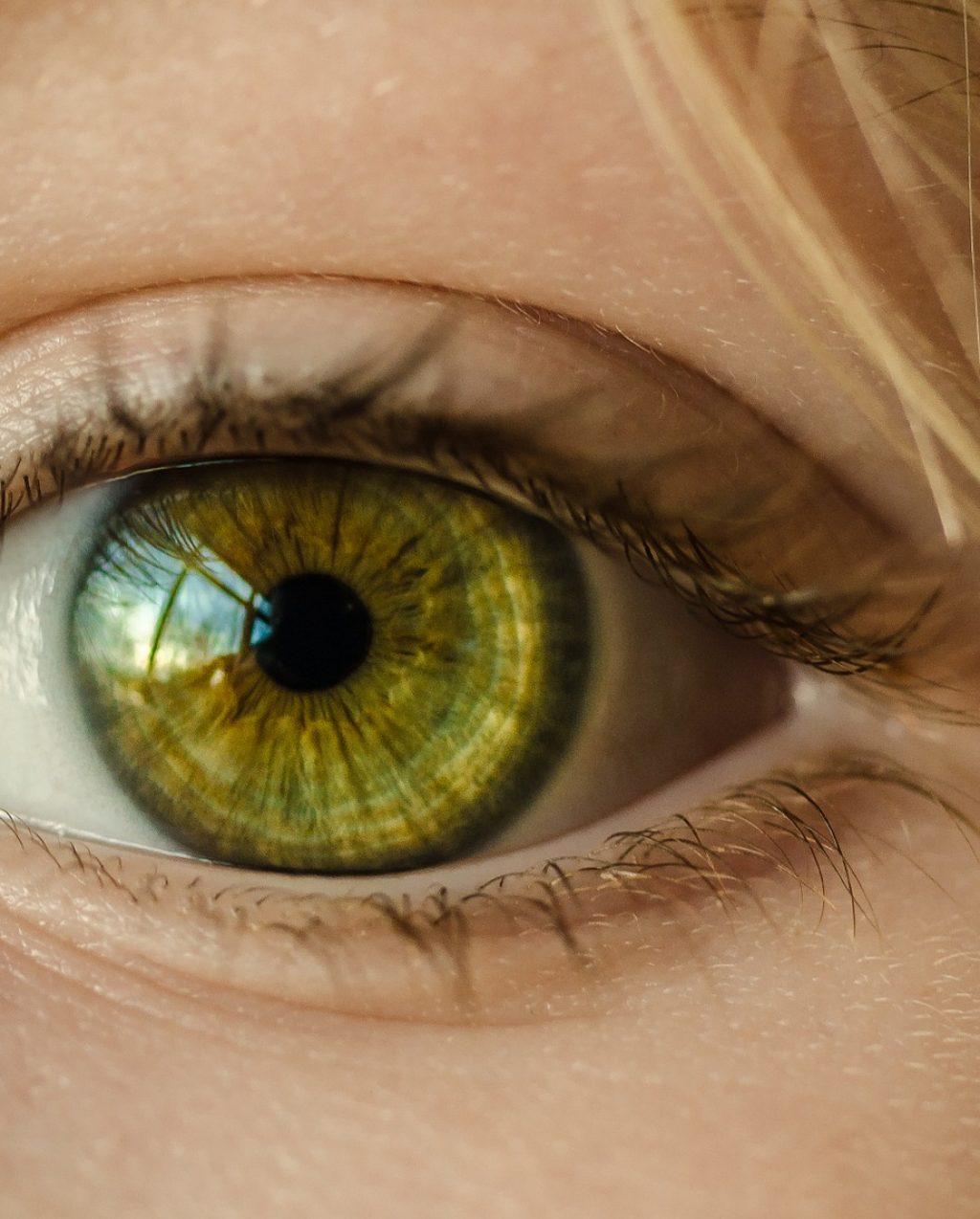 eye care ottica monte